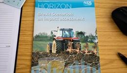 Horizon - Brexit Scenarios: an impact assessment - 11 October 2017