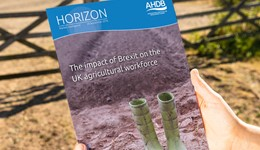 Horizon - The impact of Brexit on the UK agricultural workforce - 20 September 2016