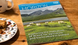 Horizon - Exploring the implications of Brexit for agriculture and horticulture in Scotland - 15 November 2017