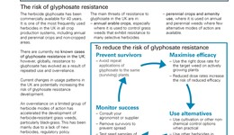Minimising the risk of glyphosate resistance