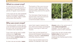 Opportunities for cover crops in conventional arable rotations