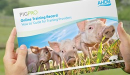 Pig Pro user guide for training providers