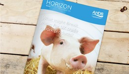 Horizon - What might Brexit mean for UK trade in pork products? - 17 January 2017