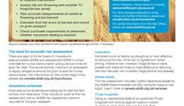 Risk assessment for fusarium mycotoxins in wheat