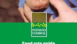 Seed rate guide - Lady Rosetta