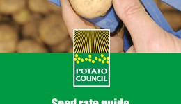 Seed rate guide - Maris Piper