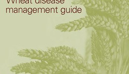 Wheat disease management guide