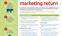 Improve your marketing return