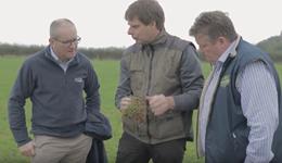 Meet Luppo Diepenbroek – AHDB Farmbench – A consultants perspective