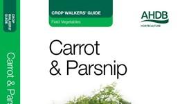 Carrot & Parsnip Crop Walkers' Guide
