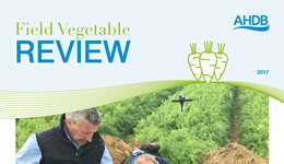 Field Vegetable Review 2017