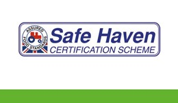 Safe Haven Certification: Giving your business the protection it needs