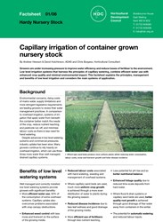 Capillary irrigation of container grown nursery stock
