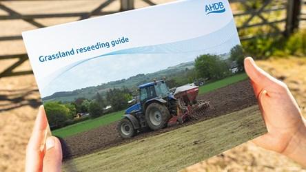 Grassland Reseeding Guide