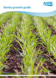 Barley growth guide