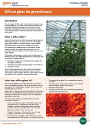 Diffuse glass for greenhouses