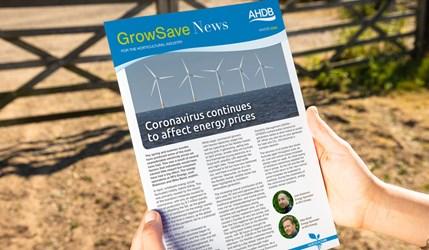 GrowSave News Winter 2020