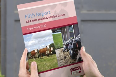 GB Cattle Health & Welfare Group - fifth report - 2020