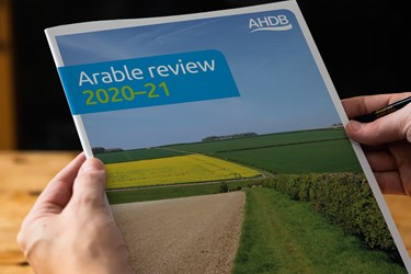 Arable review