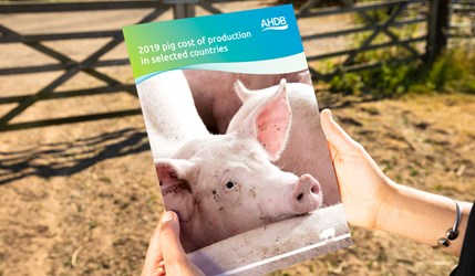 2019 pig cost of production in selected countries