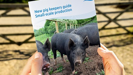 New pig keepers guide