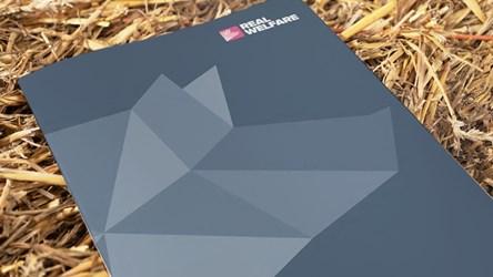 Real Welfare update report (2013–2017)