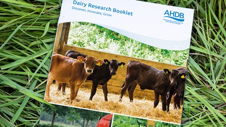 Dairy research booklet