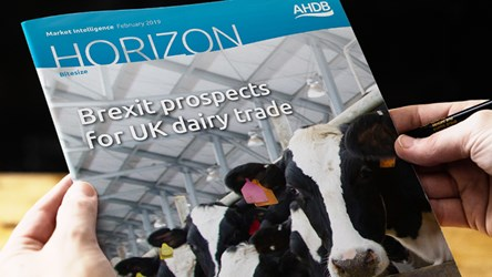 Brexit prospects for UK dairy trade