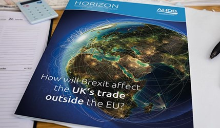 How will Brexit affect the UK's trade outside the EU?