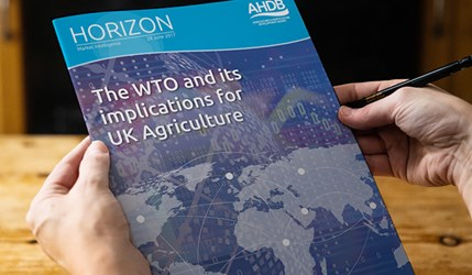 The WTO and its implications for UK agriculture