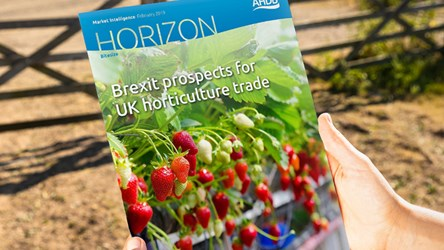 Brexit prospects for UK horticulture trade