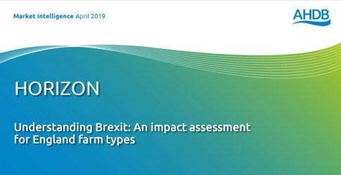 Understanding Brexit - an impact assessment