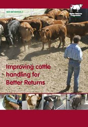 Improving cattle handling for Better Returns