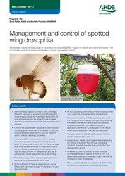 Management and control of spotted wing drosophila