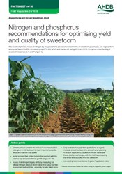 Nitrogen and phosphorus recommendations for optimising yield and quality of sweetcorn
