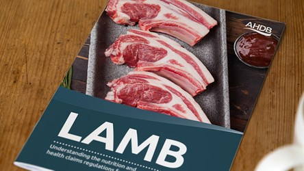 Understanding the nutrition and health claims regulations for Lamb