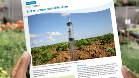 Soil Structure and Infiltration