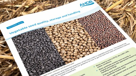 Vegetable seed quality, storage and handling