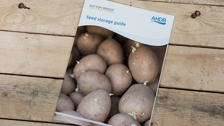 Potato seed storage guide