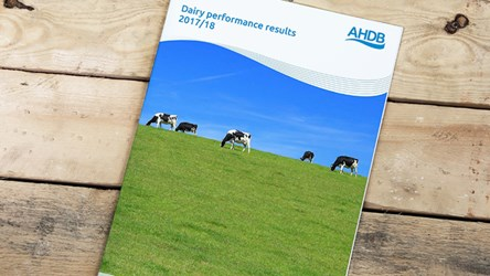 Dairy performance results 2017/18