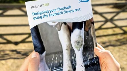 Designing your footbath using the footbath fitness test