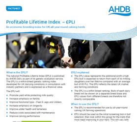 Profitable Lifetime Index (£PLI)