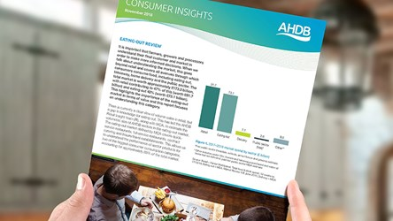 Foodservice Insights: Eating-Out Review 2018