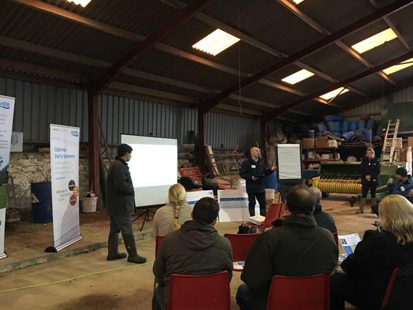 Bridge Farm Launch Introduction
