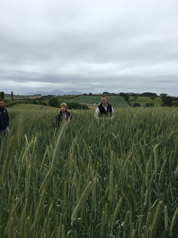 Downpatrick Monitor Farm launch meeting